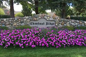 Chestnut Ridge Condominium Association